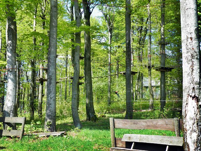 Kletterwald Auf Dem Hoherodskopf